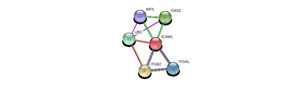 http://string-db.org/version_10/api/image/networkList?limit=0&targetmode=proteins&caller_identity=gene_cards&network_flavor=evidence&identifiers=9606.ENSP00000264832%0d%0a9606.ENSP00000349252%0d%0a9606.ENSP00000303242%0d%0a9606.ENSP00000344818%0d%0a9606.ENSP00000349770%0d%0a9606.ENSP00000342278%0d%0a