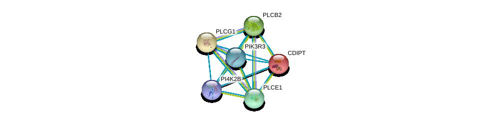 http://string-db.org/version_10/api/image/networkList?limit=0&targetmode=proteins&caller_identity=gene_cards&network_flavor=evidence&identifiers=9606.ENSP00000264864%0d%0a9606.ENSP00000219789%0d%0a9606.ENSP00000244007%0d%0a9606.ENSP00000260402%0d%0a9606.ENSP00000260766%0d%0a9606.ENSP00000262741%0d%0a