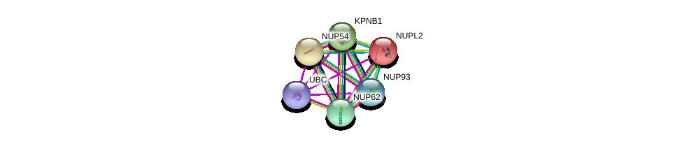 http://string-db.org/version_10/api/image/networkList?limit=0&targetmode=proteins&caller_identity=gene_cards&network_flavor=evidence&identifiers=9606.ENSP00000264883%0d%0a9606.ENSP00000305503%0d%0a9606.ENSP00000344818%0d%0a9606.ENSP00000290158%0d%0a9606.ENSP00000310668%0d%0a9606.ENSP00000258742%0d%0a