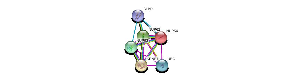 http://string-db.org/version_10/api/image/networkList?limit=0&targetmode=proteins&caller_identity=gene_cards&network_flavor=evidence&identifiers=9606.ENSP00000264883%0d%0a9606.ENSP00000305503%0d%0a9606.ENSP00000344818%0d%0a9606.ENSP00000290158%0d%0a9606.ENSP00000310668%0d%0a9606.ENSP00000417686%0d%0a