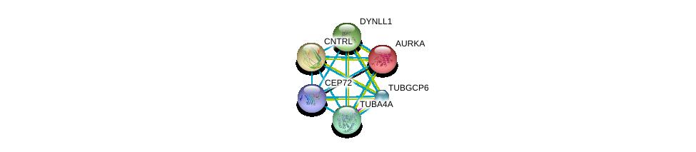 http://string-db.org/version_10/api/image/networkList?limit=0&targetmode=proteins&caller_identity=gene_cards&network_flavor=evidence&identifiers=9606.ENSP00000264935%0d%0a9606.ENSP00000216911%0d%0a9606.ENSP00000238341%0d%0a9606.ENSP00000242577%0d%0a9606.ENSP00000248437%0d%0a9606.ENSP00000248846%0d%0a