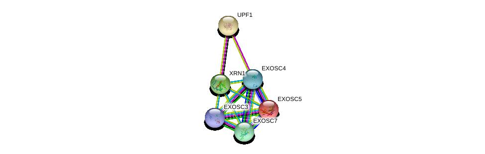 http://string-db.org/version_10/api/image/networkList?limit=0&targetmode=proteins&caller_identity=gene_cards&network_flavor=evidence&identifiers=9606.ENSP00000264951%0d%0a9606.ENSP00000262803%0d%0a9606.ENSP00000221233%0d%0a9606.ENSP00000315476%0d%0a9606.ENSP00000323046%0d%0a9606.ENSP00000265564%0d%0a