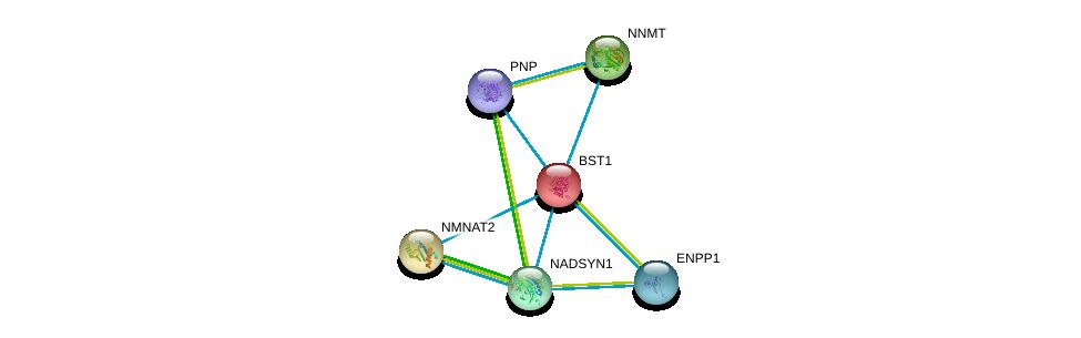 http://string-db.org/version_10/api/image/networkList?limit=0&targetmode=proteins&caller_identity=gene_cards&network_flavor=evidence&identifiers=9606.ENSP00000265016%0d%0a9606.ENSP00000287713%0d%0a9606.ENSP00000354238%0d%0a9606.ENSP00000354532%0d%0a9606.ENSP00000299964%0d%0a9606.ENSP00000326424%0d%0a