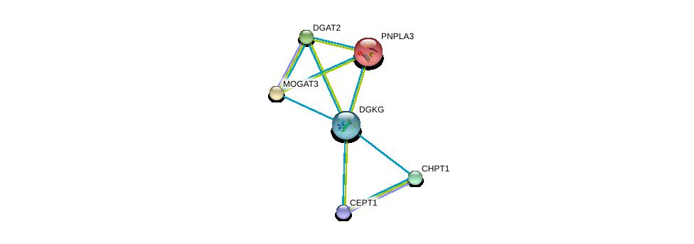 http://string-db.org/version_10/api/image/networkList?limit=0&targetmode=proteins&caller_identity=gene_cards&network_flavor=evidence&identifiers=9606.ENSP00000265022%0d%0a9606.ENSP00000349696%0d%0a9606.ENSP00000216180%0d%0a9606.ENSP00000223114%0d%0a9606.ENSP00000228027%0d%0a9606.ENSP00000229266%0d%0a