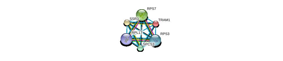 http://string-db.org/version_10/api/image/networkList?limit=0&targetmode=proteins&caller_identity=gene_cards&network_flavor=evidence&identifiers=9606.ENSP00000265044%0d%0a9606.ENSP00000462023%0d%0a9606.ENSP00000339095%0d%0a9606.ENSP00000262213%0d%0a9606.ENSP00000427463%0d%0a9606.ENSP00000433821%0d%0a