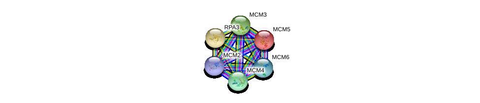 http://string-db.org/version_10/api/image/networkList?limit=0&targetmode=proteins&caller_identity=gene_cards&network_flavor=evidence&identifiers=9606.ENSP00000265056%0d%0a9606.ENSP00000216122%0d%0a9606.ENSP00000262105%0d%0a9606.ENSP00000223129%0d%0a9606.ENSP00000264156%0d%0a9606.ENSP00000229854%0d%0a