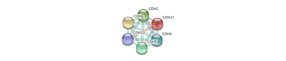 http://string-db.org/version_10/api/image/networkList?limit=0&targetmode=proteins&caller_identity=gene_cards&network_flavor=evidence&identifiers=9606.ENSP00000265071%0d%0a9606.ENSP00000269141%0d%0a9606.ENSP00000027335%0d%0a9606.ENSP00000408632%0d%0a9606.ENSP00000353656%0d%0a9606.ENSP00000344115%0d%0a