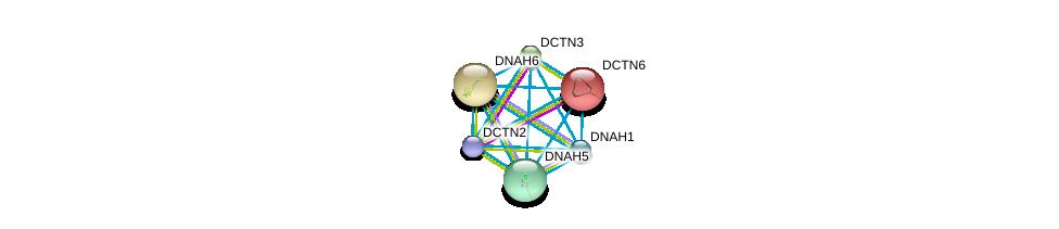 http://string-db.org/version_10/api/image/networkList?limit=0&targetmode=proteins&caller_identity=gene_cards&network_flavor=evidence&identifiers=9606.ENSP00000265104%0d%0a9606.ENSP00000408910%0d%0a9606.ENSP00000259632%0d%0a9606.ENSP00000401514%0d%0a9606.ENSP00000237449%0d%0a9606.ENSP00000221114%0d%0a