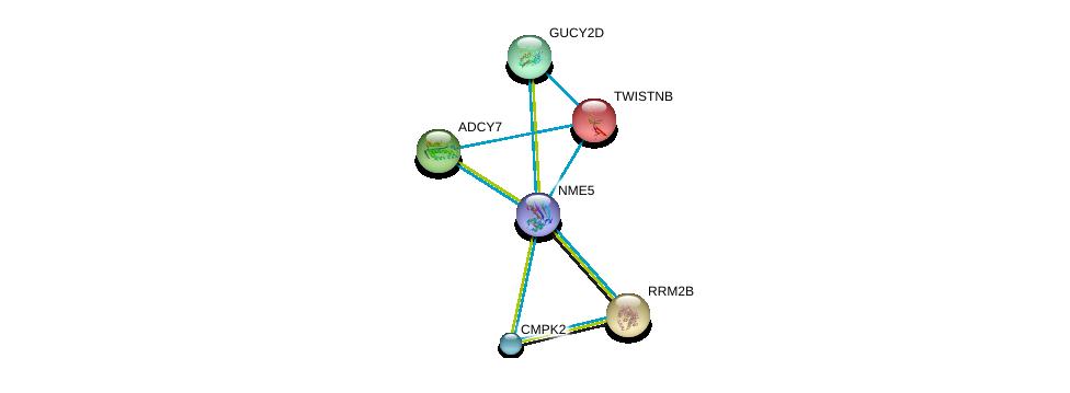 http://string-db.org/version_10/api/image/networkList?limit=0&targetmode=proteins&caller_identity=gene_cards&network_flavor=evidence&identifiers=9606.ENSP00000265191%0d%0a9606.ENSP00000222567%0d%0a9606.ENSP00000251810%0d%0a9606.ENSP00000254235%0d%0a9606.ENSP00000254854%0d%0a9606.ENSP00000256722%0d%0a