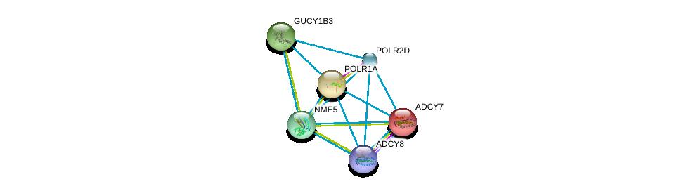 http://string-db.org/version_10/api/image/networkList?limit=0&targetmode=proteins&caller_identity=gene_cards&network_flavor=evidence&identifiers=9606.ENSP00000265191%0d%0a9606.ENSP00000254235%0d%0a9606.ENSP00000263857%0d%0a9606.ENSP00000264424%0d%0a9606.ENSP00000272645%0d%0a9606.ENSP00000286355%0d%0a