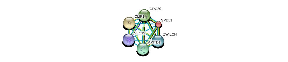 http://string-db.org/version_10/api/image/networkList?limit=0&targetmode=proteins&caller_identity=gene_cards&network_flavor=evidence&identifiers=9606.ENSP00000265295%0d%0a9606.ENSP00000303585%0d%0a9606.ENSP00000308450%0d%0a9606.ENSP00000308583%0d%0a9606.ENSP00000311429%0d%0a9606.ENSP00000312122%0d%0a