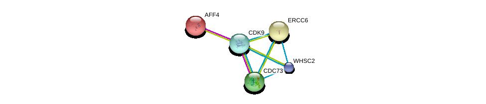 http://string-db.org/version_10/api/image/networkList?limit=0&targetmode=proteins&caller_identity=gene_cards&network_flavor=evidence&identifiers=9606.ENSP00000265343%0d%0a9606.ENSP00000362361%0d%0a9606.ENSP00000348089%0d%0a9606.ENSP00000348089%0d%0a9606.ENSP00000372335%0d%0a9606.ENSP00000356405%0d%0a