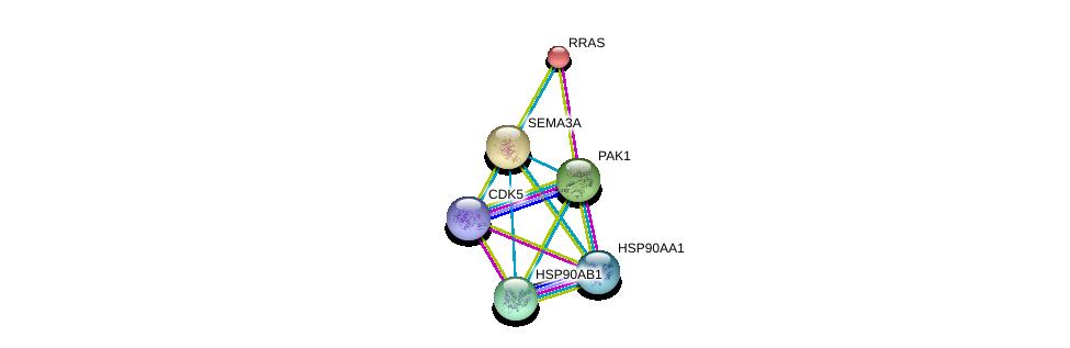 http://string-db.org/version_10/api/image/networkList?limit=0&targetmode=proteins&caller_identity=gene_cards&network_flavor=evidence&identifiers=9606.ENSP00000265362%0d%0a9606.ENSP00000325875%0d%0a9606.ENSP00000278568%0d%0a9606.ENSP00000335153%0d%0a9606.ENSP00000246792%0d%0a9606.ENSP00000419782%0d%0a