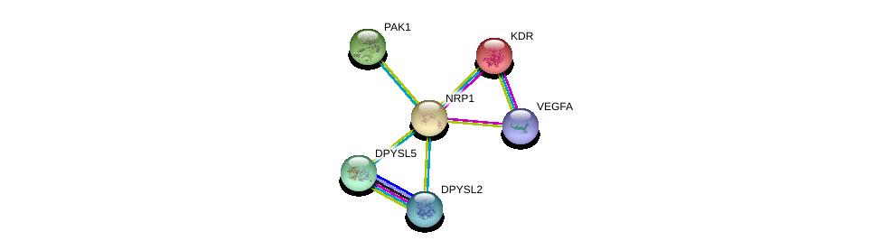 http://string-db.org/version_10/api/image/networkList?limit=0&targetmode=proteins&caller_identity=gene_cards&network_flavor=evidence&identifiers=9606.ENSP00000265371%0d%0a9606.ENSP00000361125%0d%0a9606.ENSP00000263923%0d%0a9606.ENSP00000278568%0d%0a9606.ENSP00000288699%0d%0a9606.ENSP00000309539%0d%0a