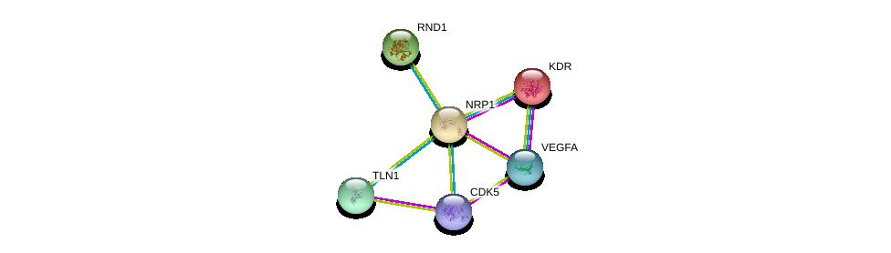http://string-db.org/version_10/api/image/networkList?limit=0&targetmode=proteins&caller_identity=gene_cards&network_flavor=evidence&identifiers=9606.ENSP00000265371%0d%0a9606.ENSP00000361125%0d%0a9606.ENSP00000263923%0d%0a9606.ENSP00000316029%0d%0a9606.ENSP00000308461%0d%0a9606.ENSP00000419782%0d%0a