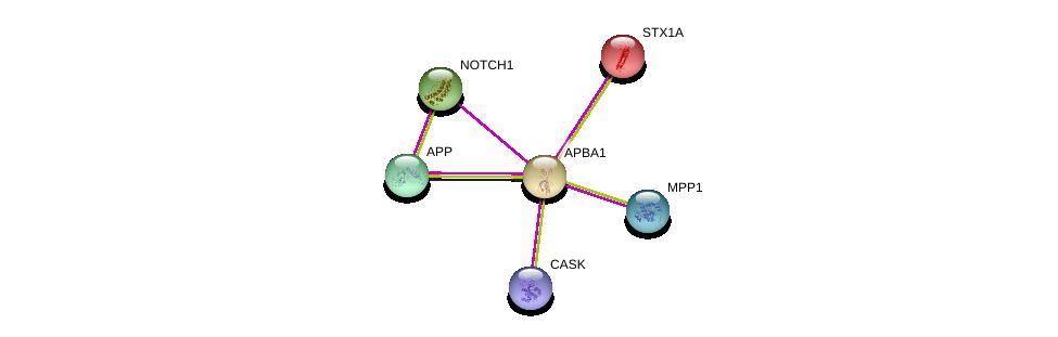 http://string-db.org/version_10/api/image/networkList?limit=0&targetmode=proteins&caller_identity=gene_cards&network_flavor=evidence&identifiers=9606.ENSP00000265381%0d%0a9606.ENSP00000367408%0d%0a9606.ENSP00000284981%0d%0a9606.ENSP00000222812%0d%0a9606.ENSP00000358547%0d%0a9606.ENSP00000277541%0d%0a