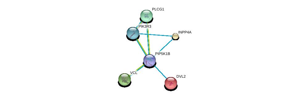 http://string-db.org/version_10/api/image/networkList?limit=0&targetmode=proteins&caller_identity=gene_cards&network_flavor=evidence&identifiers=9606.ENSP00000265382%0d%0a9606.ENSP00000211998%0d%0a9606.ENSP00000244007%0d%0a9606.ENSP00000005340%0d%0a9606.ENSP00000074304%0d%0a9606.ENSP00000262741%0d%0a