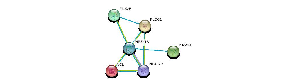 http://string-db.org/version_10/api/image/networkList?limit=0&targetmode=proteins&caller_identity=gene_cards&network_flavor=evidence&identifiers=9606.ENSP00000265382%0d%0a9606.ENSP00000244007%0d%0a9606.ENSP00000262992%0d%0a9606.ENSP00000211998%0d%0a9606.ENSP00000264864%0d%0a9606.ENSP00000269554%0d%0a