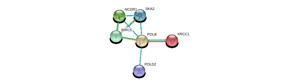 http://string-db.org/version_10/api/image/networkList?limit=0&targetmode=proteins&caller_identity=gene_cards&network_flavor=evidence&identifiers=9606.ENSP00000265421%0d%0a9606.ENSP00000262887%0d%0a9606.ENSP00000268712%0d%0a9606.ENSP00000301633%0d%0a9606.ENSP00000333433%0d%0a9606.ENSP00000386105%0d%0a