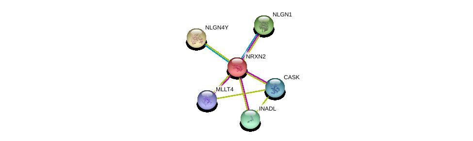 http://string-db.org/version_10/api/image/networkList?limit=0&targetmode=proteins&caller_identity=gene_cards&network_flavor=evidence&identifiers=9606.ENSP00000265459%0d%0a9606.ENSP00000342535%0d%0a9606.ENSP00000367408%0d%0a9606.ENSP00000375956%0d%0a9606.ENSP00000360200%0d%0a9606.ENSP00000354541%0d%0a