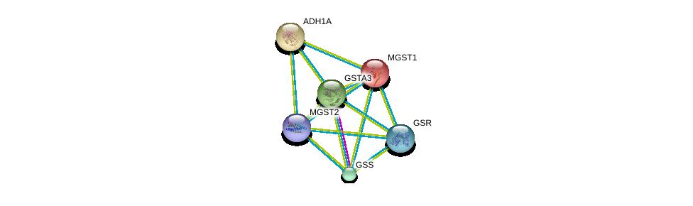 http://string-db.org/version_10/api/image/networkList?limit=0&targetmode=proteins&caller_identity=gene_cards&network_flavor=evidence&identifiers=9606.ENSP00000265498%0d%0a9606.ENSP00000010404%0d%0a9606.ENSP00000209668%0d%0a9606.ENSP00000211122%0d%0a9606.ENSP00000216951%0d%0a9606.ENSP00000221130%0d%0a