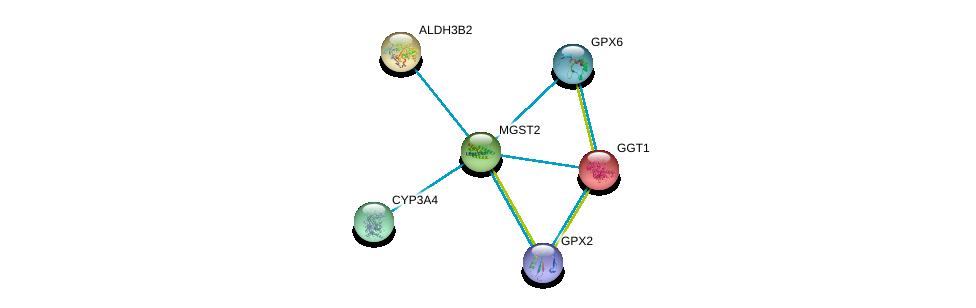 http://string-db.org/version_10/api/image/networkList?limit=0&targetmode=proteins&caller_identity=gene_cards&network_flavor=evidence&identifiers=9606.ENSP00000265498%0d%0a9606.ENSP00000337915%0d%0a9606.ENSP00000248923%0d%0a9606.ENSP00000374265%0d%0a9606.ENSP00000354581%0d%0a9606.ENSP00000255084%0d%0a