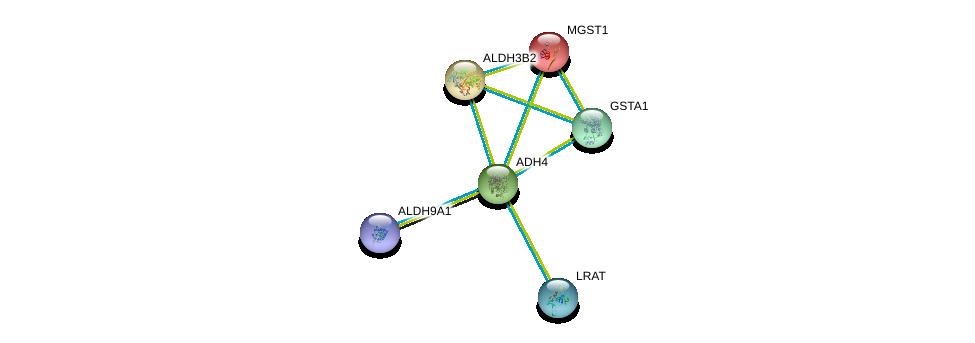 http://string-db.org/version_10/api/image/networkList?limit=0&targetmode=proteins&caller_identity=gene_cards&network_flavor=evidence&identifiers=9606.ENSP00000265512%0d%0a9606.ENSP00000335620%0d%0a9606.ENSP00000337224%0d%0a9606.ENSP00000255084%0d%0a9606.ENSP00000010404%0d%0a9606.ENSP00000346827%0d%0a