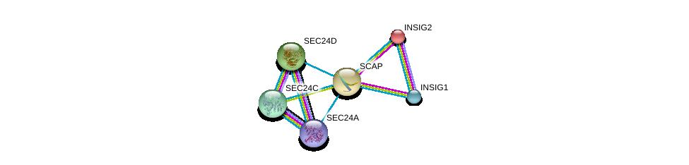 http://string-db.org/version_10/api/image/networkList?limit=0&targetmode=proteins&caller_identity=gene_cards&network_flavor=evidence&identifiers=9606.ENSP00000265565%0d%0a9606.ENSP00000344741%0d%0a9606.ENSP00000245787%0d%0a9606.ENSP00000321845%0d%0a9606.ENSP00000381823%0d%0a9606.ENSP00000280551%0d%0a