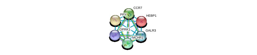 http://string-db.org/version_10/api/image/networkList?limit=0&targetmode=proteins&caller_identity=gene_cards&network_flavor=evidence&identifiers=9606.ENSP00000265572%0d%0a9606.ENSP00000014930%0d%0a9606.ENSP00000225992%0d%0a9606.ENSP00000246657%0d%0a9606.ENSP00000249016%0d%0a9606.ENSP00000249041%0d%0a