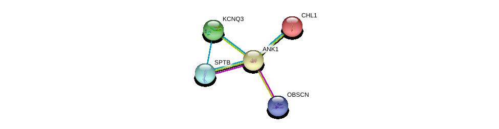 http://string-db.org/version_10/api/image/networkList?limit=0&targetmode=proteins&caller_identity=gene_cards&network_flavor=evidence&identifiers=9606.ENSP00000265709%0d%0a9606.ENSP00000455507%0d%0a9606.ENSP00000374372%0d%0a9606.ENSP00000374372%0d%0a9606.ENSP00000256509%0d%0a9606.ENSP00000373648%0d%0a