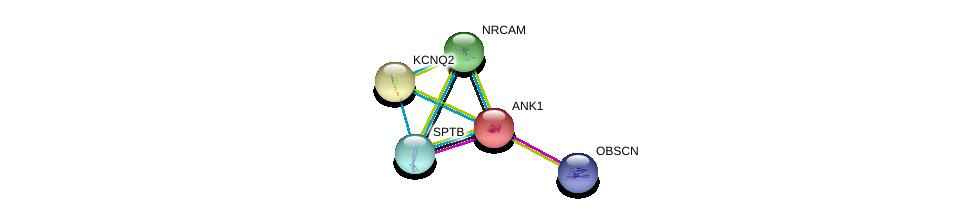 http://string-db.org/version_10/api/image/networkList?limit=0&targetmode=proteins&caller_identity=gene_cards&network_flavor=evidence&identifiers=9606.ENSP00000265709%0d%0a9606.ENSP00000455507%0d%0a9606.ENSP00000374372%0d%0a9606.ENSP00000374372%0d%0a9606.ENSP00000352035%0d%0a9606.ENSP00000368314%0d%0a