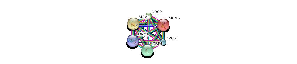 http://string-db.org/version_10/api/image/networkList?limit=0&targetmode=proteins&caller_identity=gene_cards&network_flavor=evidence&identifiers=9606.ENSP00000265728%0d%0a9606.ENSP00000229854%0d%0a9606.ENSP00000297431%0d%0a9606.ENSP00000360621%0d%0a9606.ENSP00000234296%0d%0a9606.ENSP00000216122%0d%0a
