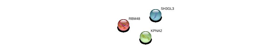 http://string-db.org/version_10/api/image/networkList?limit=0&targetmode=proteins&caller_identity=gene_cards&network_flavor=evidence&identifiers=9606.ENSP00000265732%0d%0a9606.ENSP00000332455%0d%0a9606.ENSP00000391372%0d%0a