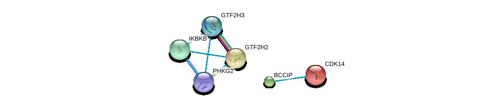 http://string-db.org/version_10/api/image/networkList?limit=0&targetmode=proteins&caller_identity=gene_cards&network_flavor=evidence&identifiers=9606.ENSP00000265741%0d%0a9606.ENSP00000455607%0d%0a9606.ENSP00000445162%0d%0a9606.ENSP00000357748%0d%0a9606.ENSP00000274400%0d%0a9606.ENSP00000430684%0d%0a