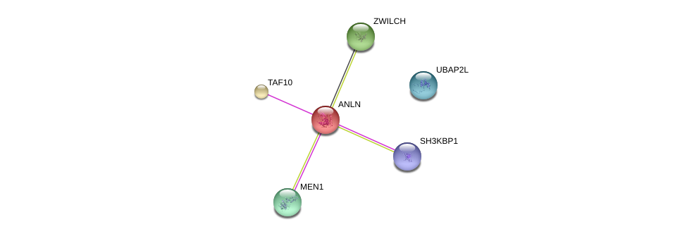http://string-db.org/version_10/api/image/networkList?limit=0&targetmode=proteins&caller_identity=gene_cards&network_flavor=evidence&identifiers=9606.ENSP00000265748%0d%0a9606.ENSP00000299424%0d%0a9606.ENSP00000337088%0d%0a9606.ENSP00000380921%0d%0a9606.ENSP00000355343%0d%0a9606.ENSP00000311429%0d%0a