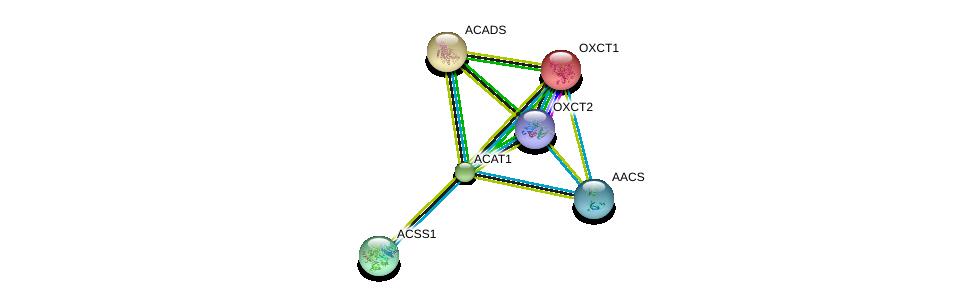 http://string-db.org/version_10/api/image/networkList?limit=0&targetmode=proteins&caller_identity=gene_cards&network_flavor=evidence&identifiers=9606.ENSP00000265838%0d%0a9606.ENSP00000196371%0d%0a9606.ENSP00000361914%0d%0a9606.ENSP00000242592%0d%0a9606.ENSP00000316924%0d%0a9606.ENSP00000324842%0d%0a