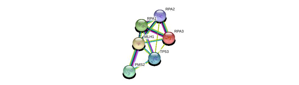 http://string-db.org/version_10/api/image/networkList?limit=0&targetmode=proteins&caller_identity=gene_cards&network_flavor=evidence&identifiers=9606.ENSP00000265849%0d%0a9606.ENSP00000231790%0d%0a9606.ENSP00000269305%0d%0a9606.ENSP00000363021%0d%0a9606.ENSP00000254719%0d%0a9606.ENSP00000223129%0d%0a