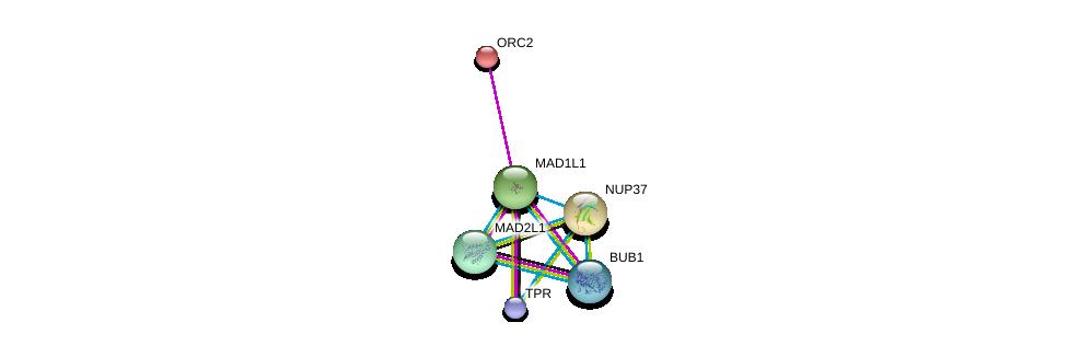 http://string-db.org/version_10/api/image/networkList?limit=0&targetmode=proteins&caller_identity=gene_cards&network_flavor=evidence&identifiers=9606.ENSP00000265854%0d%0a9606.ENSP00000296509%0d%0a9606.ENSP00000234296%0d%0a9606.ENSP00000302530%0d%0a9606.ENSP00000356448%0d%0a9606.ENSP00000251074%0d%0a