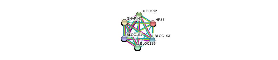http://string-db.org/version_10/api/image/networkList?limit=0&targetmode=proteins&caller_identity=gene_cards&network_flavor=evidence&identifiers=9606.ENSP00000265967%0d%0a9606.ENSP00000447537%0d%0a9606.ENSP00000393840%0d%0a9606.ENSP00000380598%0d%0a9606.ENSP00000359398%0d%0a9606.ENSP00000357674%0d%0a