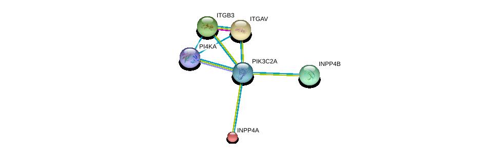http://string-db.org/version_10/api/image/networkList?limit=0&targetmode=proteins&caller_identity=gene_cards&network_flavor=evidence&identifiers=9606.ENSP00000265970%0d%0a9606.ENSP00000074304%0d%0a9606.ENSP00000261023%0d%0a9606.ENSP00000262017%0d%0a9606.ENSP00000262992%0d%0a9606.ENSP00000458238%0d%0a