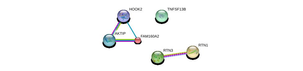 http://string-db.org/version_10/api/image/networkList?limit=0&targetmode=proteins&caller_identity=gene_cards&network_flavor=evidence&identifiers=9606.ENSP00000265978%0d%0a9606.ENSP00000380785%0d%0a9606.ENSP00000365048%0d%0a9606.ENSP00000378152%0d%0a9606.ENSP00000344106%0d%0a9606.ENSP00000267484%0d%0a