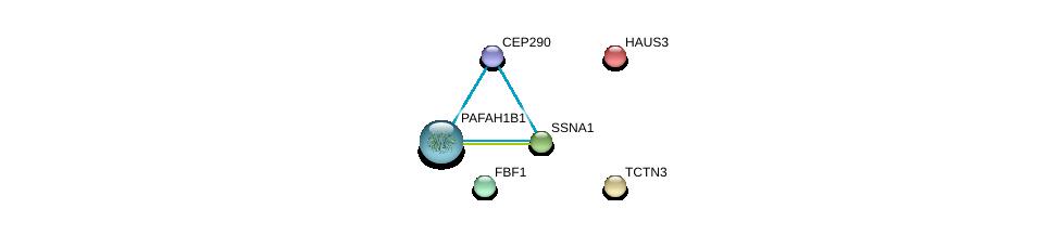 http://string-db.org/version_10/api/image/networkList?limit=0&targetmode=proteins&caller_identity=gene_cards&network_flavor=evidence&identifiers=9606.ENSP00000265993%0d%0a9606.ENSP00000313752%0d%0a9606.ENSP00000380378%0d%0a9606.ENSP00000243706%0d%0a9606.ENSP00000448012%0d%0a9606.ENSP00000324292%0d%0a