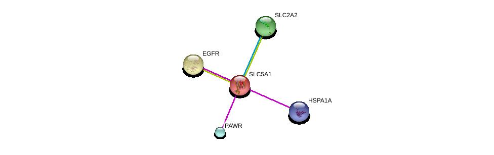 http://string-db.org/version_10/api/image/networkList?limit=0&targetmode=proteins&caller_identity=gene_cards&network_flavor=evidence&identifiers=9606.ENSP00000266088%0d%0a9606.ENSP00000323568%0d%0a9606.ENSP00000275493%0d%0a9606.ENSP00000364802%0d%0a9606.ENSP00000328088%0d%0a