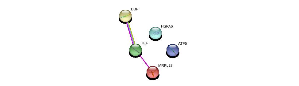 http://string-db.org/version_10/api/image/networkList?limit=0&targetmode=proteins&caller_identity=gene_cards&network_flavor=evidence&identifiers=9606.ENSP00000266304%0d%0a9606.ENSP00000222122%0d%0a9606.ENSP00000199706%0d%0a9606.ENSP00000310219%0d%0a9606.ENSP00000396954%0d%0a9606.ENSP00000396954%0d%0a