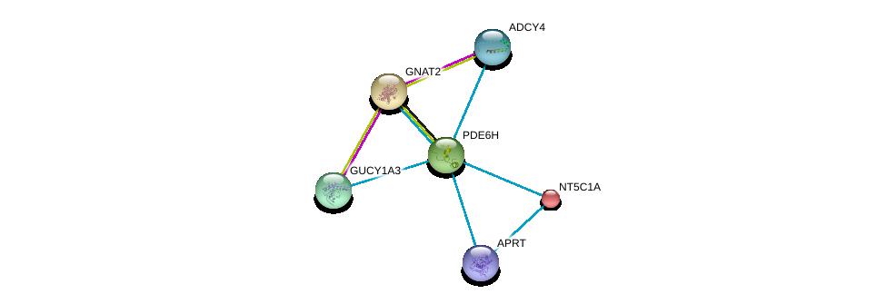 http://string-db.org/version_10/api/image/networkList?limit=0&targetmode=proteins&caller_identity=gene_cards&network_flavor=evidence&identifiers=9606.ENSP00000266395%0d%0a9606.ENSP00000367615%0d%0a9606.ENSP00000296518%0d%0a9606.ENSP00000235628%0d%0a9606.ENSP00000251337%0d%0a9606.ENSP00000312126%0d%0a