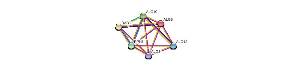 http://string-db.org/version_10/api/image/networkList?limit=0&targetmode=proteins&caller_identity=gene_cards&network_flavor=evidence&identifiers=9606.ENSP00000266483%0d%0a9606.ENSP00000250498%0d%0a9606.ENSP00000380793%0d%0a9606.ENSP00000239891%0d%0a9606.ENSP00000333813%0d%0a9606.ENSP00000296255%0d%0a