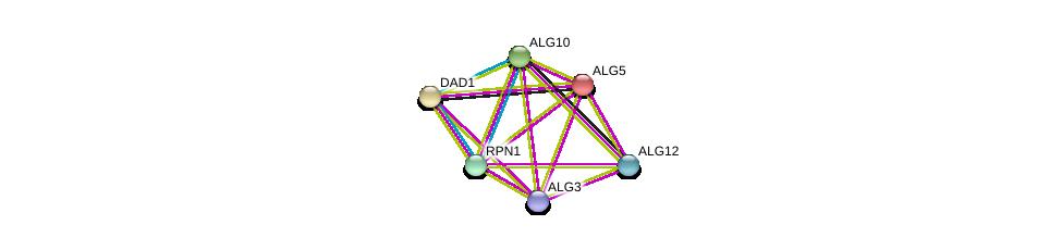 http://string-db.org/version_10/api/image/networkList?limit=0&targetmode=proteins&caller_identity=gene_cards&network_flavor=evidence&identifiers=9606.ENSP00000266483%0d%0a9606.ENSP00000250498%0d%0a9606.ENSP00000380793%0d%0a9606.ENSP00000333813%0d%0a9606.ENSP00000239891%0d%0a9606.ENSP00000296255%0d%0a