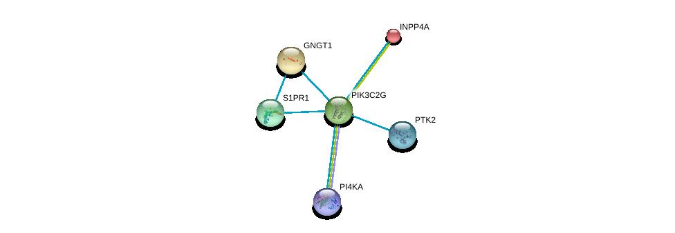 http://string-db.org/version_10/api/image/networkList?limit=0&targetmode=proteins&caller_identity=gene_cards&network_flavor=evidence&identifiers=9606.ENSP00000266497%0d%0a9606.ENSP00000248572%0d%0a9606.ENSP00000305416%0d%0a9606.ENSP00000074304%0d%0a9606.ENSP00000458238%0d%0a9606.ENSP00000341189%0d%0a