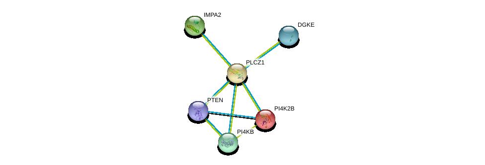 http://string-db.org/version_10/api/image/networkList?limit=0&targetmode=proteins&caller_identity=gene_cards&network_flavor=evidence&identifiers=9606.ENSP00000266505%0d%0a9606.ENSP00000271657%0d%0a9606.ENSP00000264864%0d%0a9606.ENSP00000269159%0d%0a9606.ENSP00000284061%0d%0a9606.ENSP00000361021%0d%0a