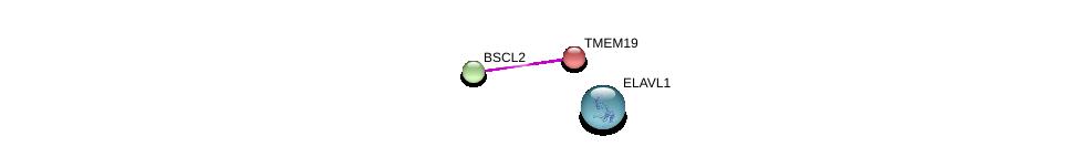 http://string-db.org/version_10/api/image/networkList?limit=0&targetmode=proteins&caller_identity=gene_cards&network_flavor=evidence&identifiers=9606.ENSP00000266673%0d%0a9606.ENSP00000354032%0d%0a9606.ENSP00000385269%0d%0a